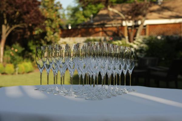 Napa Valley Champagne Glasses
